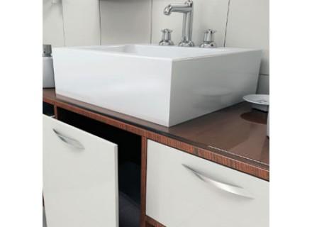Bathroom sinks: varieties, features